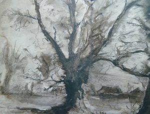 Wolkersboom 1944